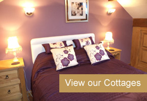 View our Cottages